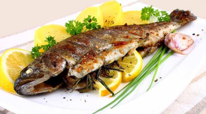 ماهی غذایی سرشار از امگا ۳