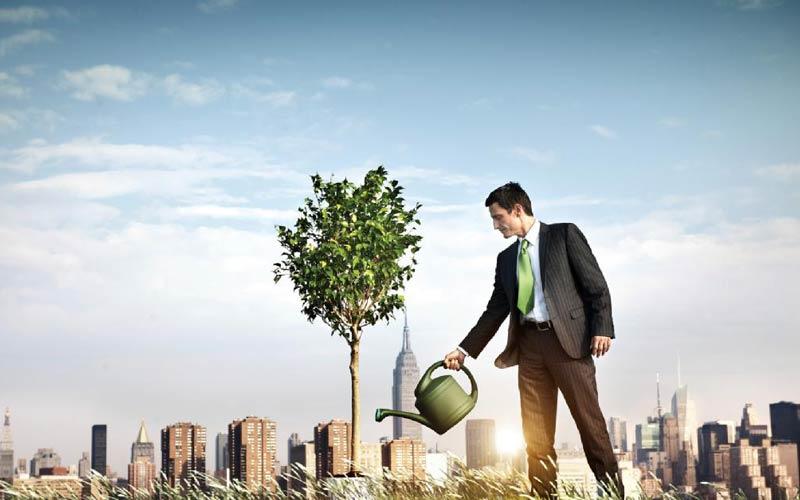 مدیران اجرایی با کمک انرژی کارمندان میتوانند تاثیرات استراتژیک داشته باشند