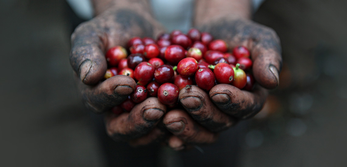 ۱۳ خاصیت اثبات شده قهوه برای سلامتی