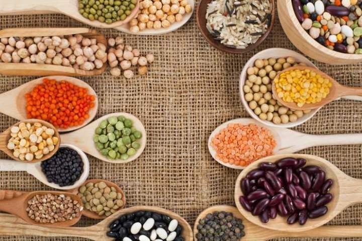 پروتين های گیاهی