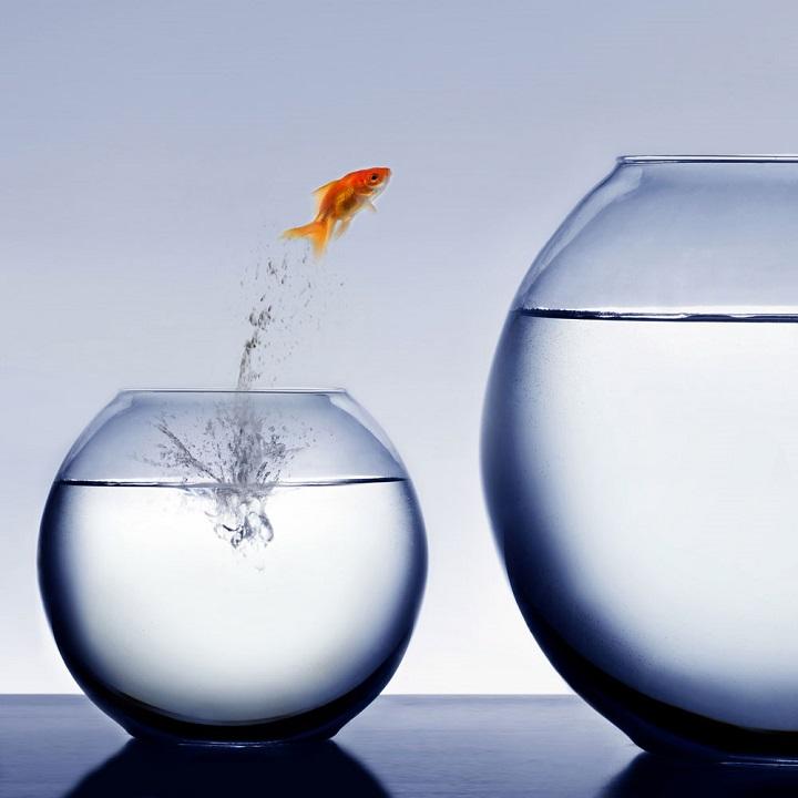 دوری نکردن از تغییر