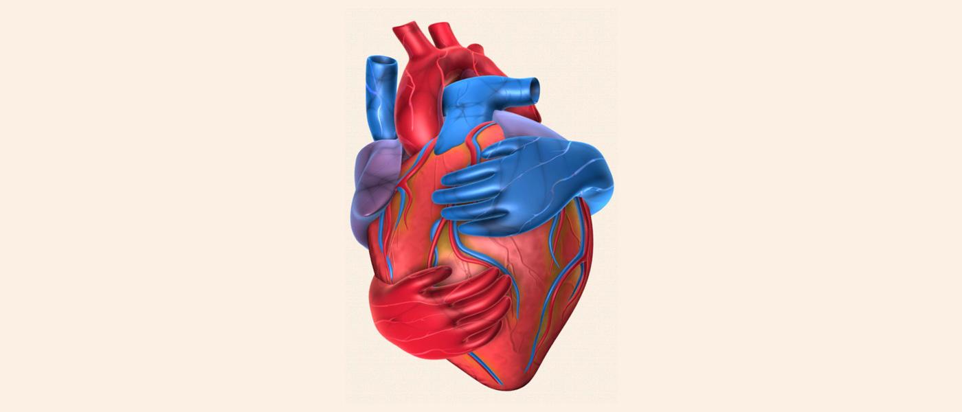 چطور خطر ابتلا به بیماریهای قلبی را کاهش دهیم؟
