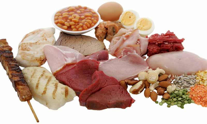 غذاهای پروتئینی