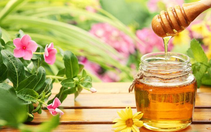 عسل - درمان جوش