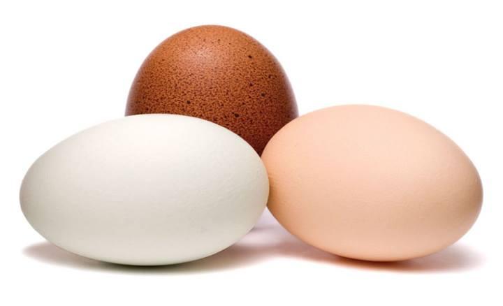 مصرف تخممرغ برای چربی سوزی