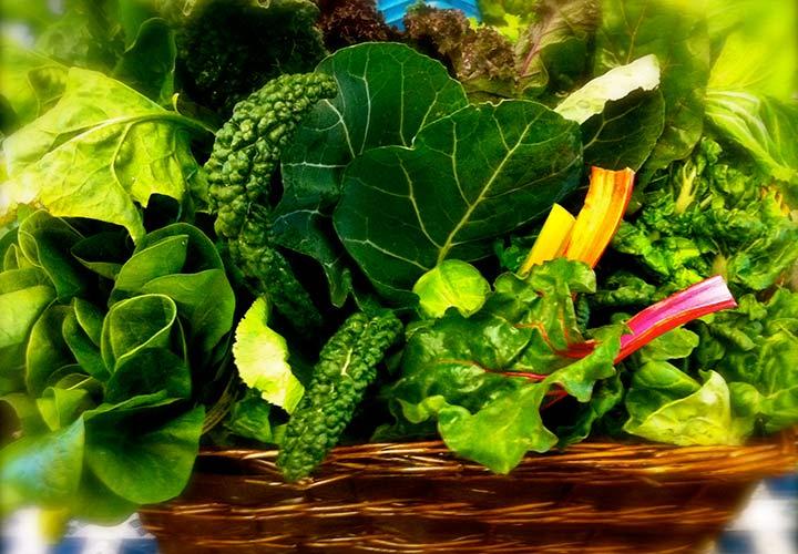 سبزیجات برگتیره