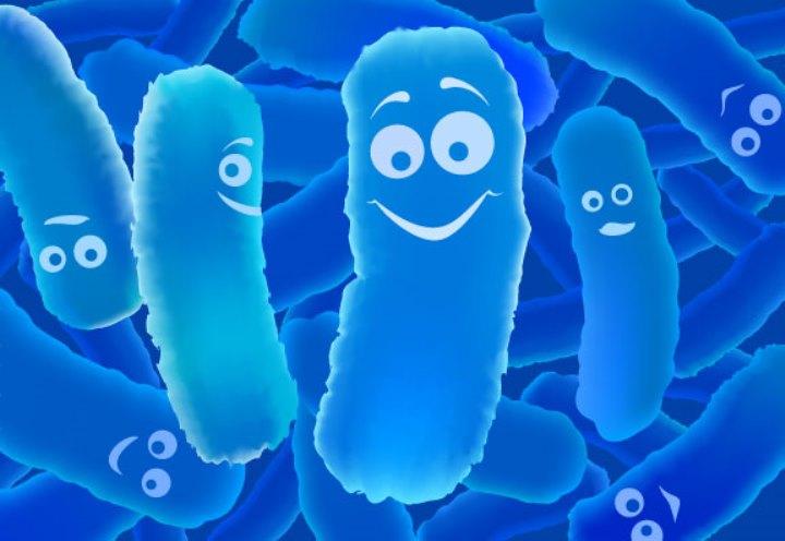 باکتری های مفید