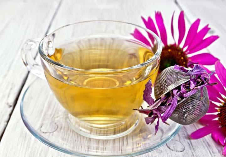 سرخارگل برای درمان سرماخوردگی