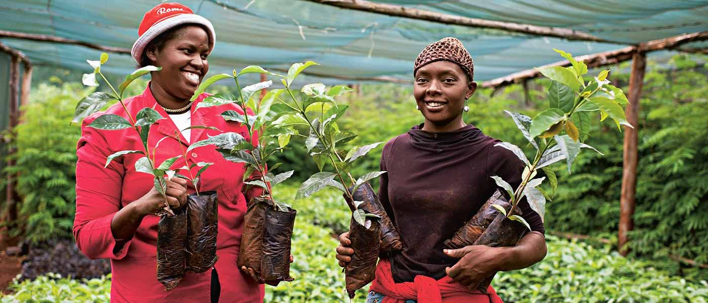 achieving ethiopias development goals - HD2262×1506