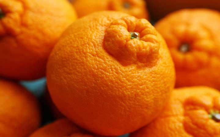 با رژیم میوه میتوانید میزان فیبر دریافتی خود را افزایش دهید.