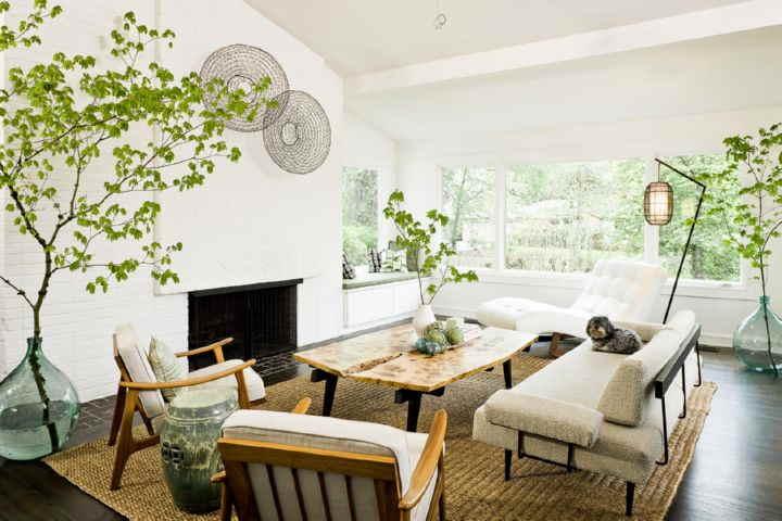 چگونه زیبا شویم - استفاده از گل و گیاه در خانه