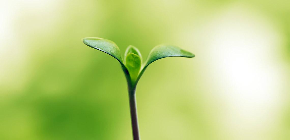 ۵ راه برای افزایش امید در زندگی