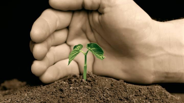 مسئولیت اجتماعی سازمان - حفاظت از محیط زیست