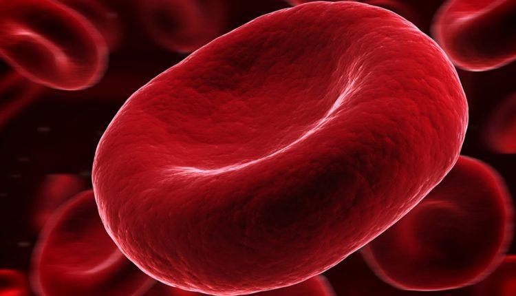 پلاسمای خون