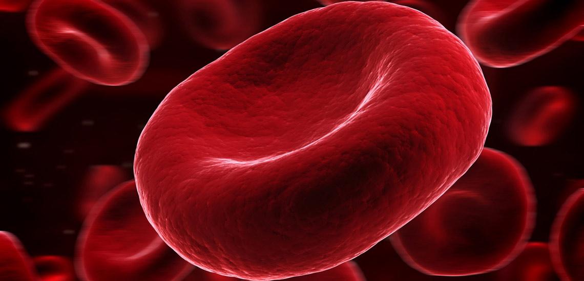 مواد غذایی خون ساز؛ با کم خونی مبارزه کنید