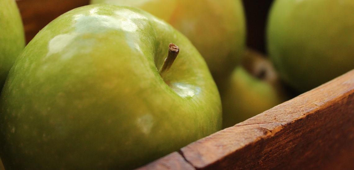 خواص سیب؛ ۱۴ خاصیتی که سلامتی شما را بیمه میکند