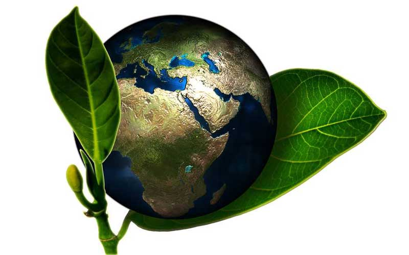 حمایت از محیط زیست - بازاریابی سبز چیست