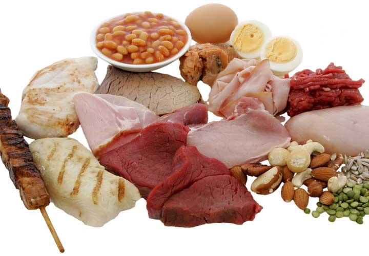 دانستنی های بدنسازی - پروتئین در عضلهسازی نقش مهمی دارد.