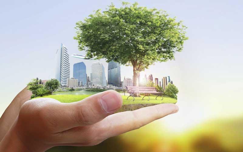 واکنشهایی که مصرف سبز را فراگیر کردند - بازاریابی سبز چیست