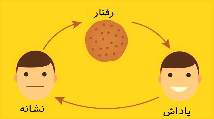 شناخت چرخه عادت برای ترک عادت ضروری است