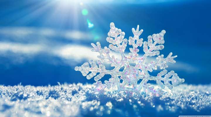 بی انگیزگی - دانه برف