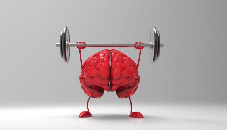 چگونه حافظه قوی داشته باشیم