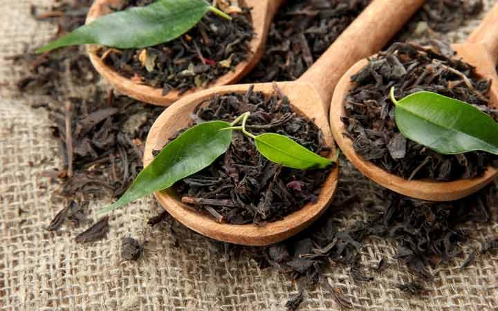 چای سیستم ایمنی بدن را بهبود می بخشد - خواص چای سیاه