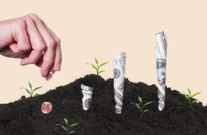 سرمایه گذاری خطرپذیر - عملکرد VC از دیدگاه یک کارآفرین