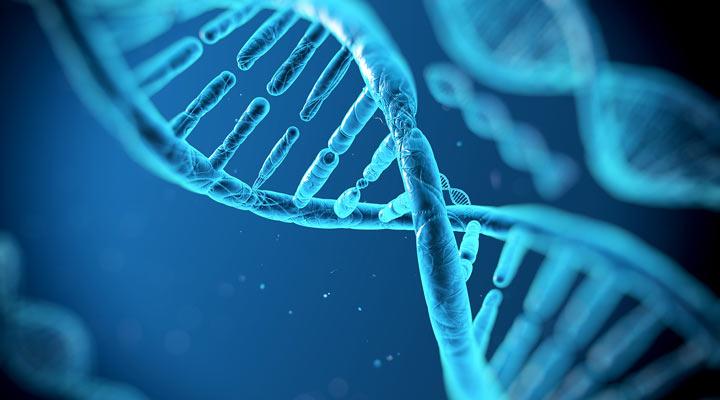 آیا باهوش بودن ارثی است - ژنتیک