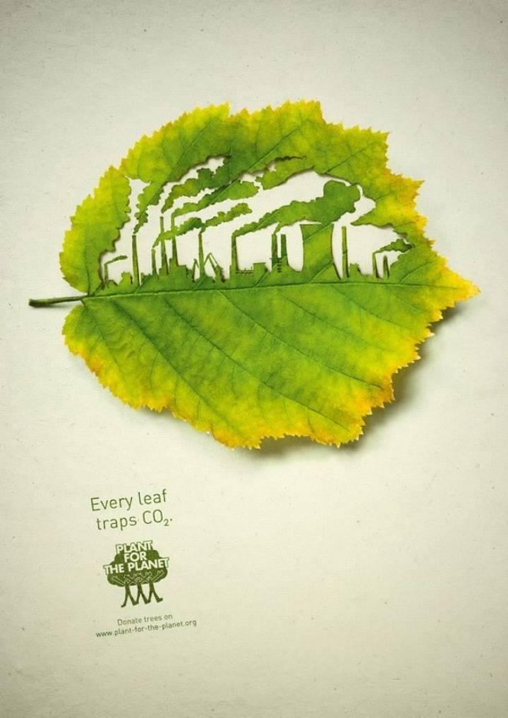 الهام از طبیعت برای ایجاد تبلیغات خلاقانه