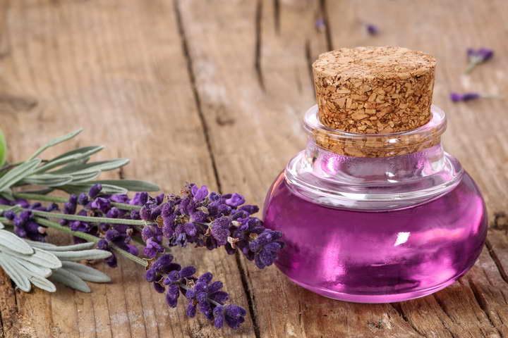 برای درمان بی خوابی از عصاره های گیاهی استفاده کنید