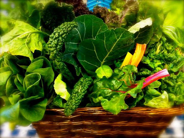 برای درمان بی خوابی سبزیجات برگدار بخورید