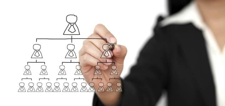 انواع ساختار سازمانی - ساختار وظیفه ای