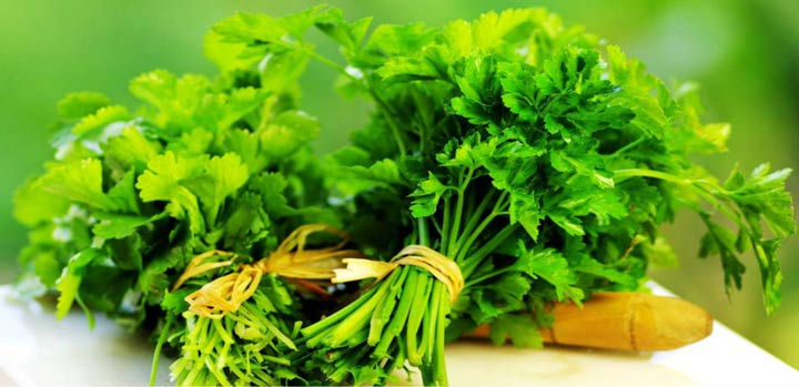 Herb-That-Kills-Lung-Cancer-Cells.jpg