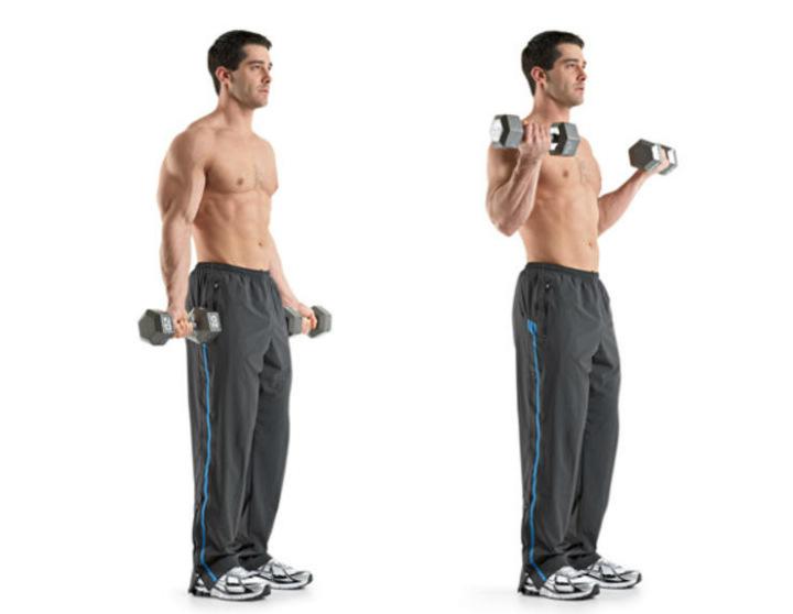 تقویت عضلات بازوها - حرکتی ورزشی برای تقویت عضلات دوسر بازو