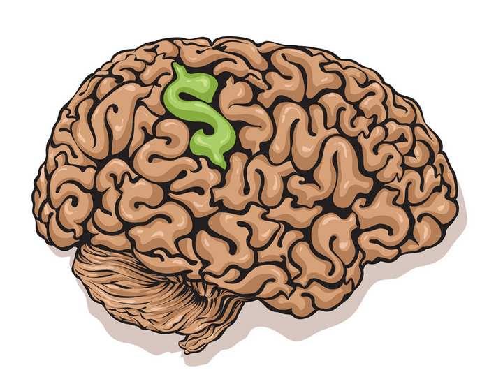 مغز در حال فعالیت - روانشناسی پول