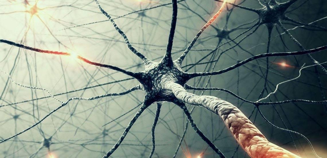 راههای تقویت حافظه؛ راهکارهایی که کمک میکند به جنگ فراموشی بروید