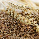 محصولات ارگانیک-ویژگی ها-فواید-نحوه ی شناسایی
