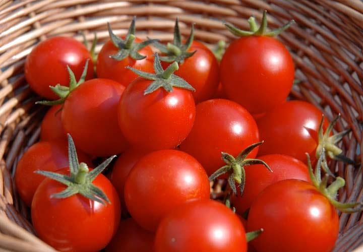 دارا بودن ویتامین ها و مواد معدنی مختلف از خواص گوجه فرنگی است.