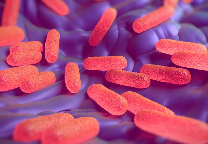 آجیل خام ممکن است محتوی باکتری ها و قارچ های مضر باشد.