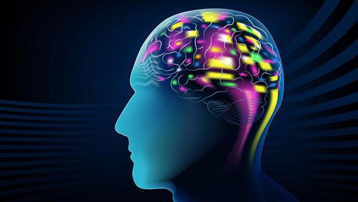 حسابداری ذهنی - ذهن دارای دسته بندی های متفاوتی برای حسابداری ذهنی است