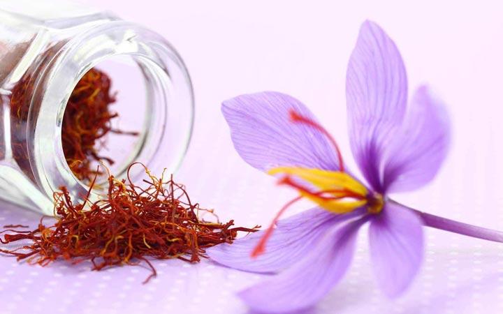 خواص زعفران - موارد احتیاط