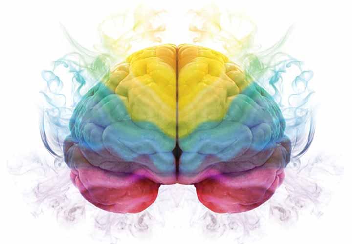 مغز رنگی