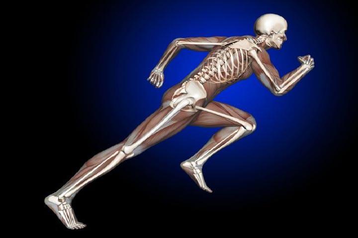 سیر می تواند سلامت استخوان ها را بهبود بخشد