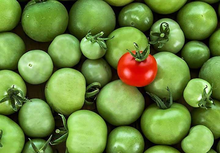 انواع بازار - محصولات متنوع در بازار رقابت انحصاری