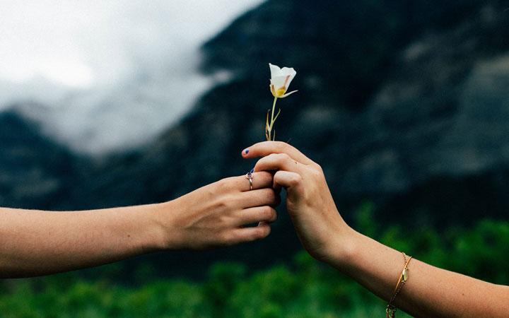 ۱۲ روش برای فراموش کردن کینه و کدورت ها - بخشنده باشید