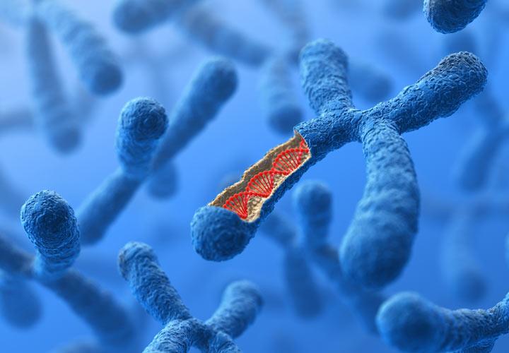 ساختار DNA در کروموزوم - هموفیلی