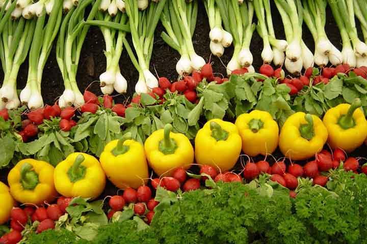 مواد غذایی ارگانیک