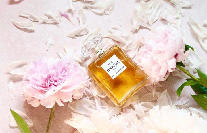 ۶ عطر فرانسوی زنانه که بوی جذبکننده و وسوسهانگیزی دارد