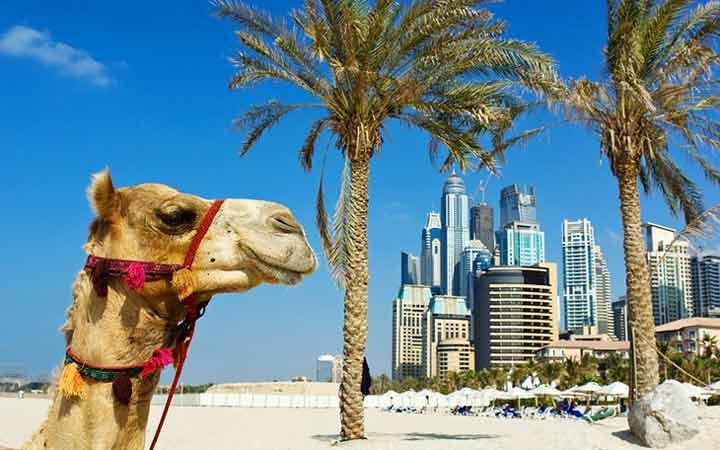 ساحل جمیرا ـ جاهای دیدنی دوبی
